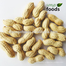 New Crop Peanut In shells, Dried Fruit