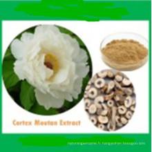 Huile essentielle de racine d'angélique 100% naturelle (Ngelicaarchangelica) CAS: 8015-64-3