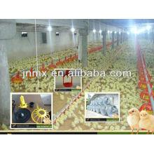 O engenheiro profissional e criador profissional usam equipamento de alimentação de frango