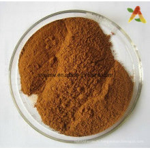 Natural Tribulus Terrestris Extract Saponins Powder