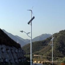 Luz de calle Solar de viento (50W)