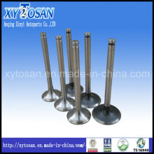 Engine Valve for Peugeot Tud3, Tud5, Xud7, Xud9, Xud11