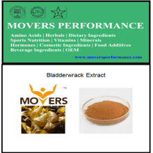 Hot Sell Natural Extract: Bladderwrack Extract