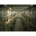 Dairy cow milking parlor