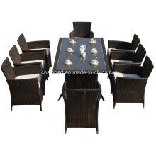Rattan Möbel für Indoor / Outdoor mit 8 Sitzer / SGS (4006-1)