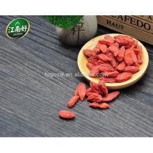 Heiße verkaufende goji Beeren mit angemessenem von Jiangnanhao