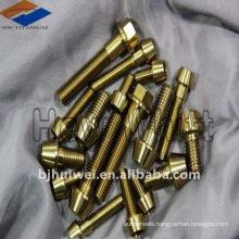 Titanium Hex socket head bolt