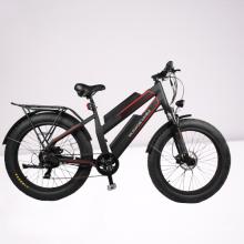 double battery 48V 750W 11.6Ah long range fat tire electric bike