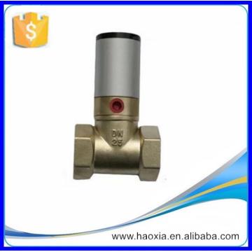 Hochwertiges doppeltwirkendes pneumatisches Kolbenventil Q22HD-25