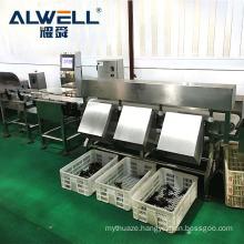 Automatic shrimp fish weight sorting machine