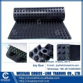 for waterproof HDPE plastic dimple drainage board