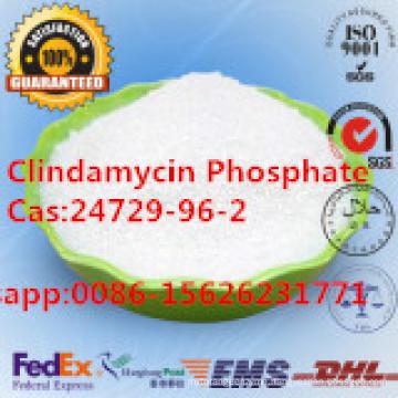 Antibiotic CAS: 24729-96-2 Clindamycin Phosphate Pharmaceutical Chemical
