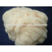 Laine de mouton chinoise blanche et crème