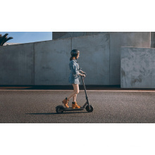 Balance Cheap New Foldable 2 Threemotor Tricycle Fat Tire 800W Self Self Balance Electric Scooter