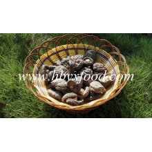 Good Quality Dried Smooth Surface Shiitake Mushroom