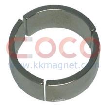 Neodym-Permanentmagneten für Ölfeld Motor