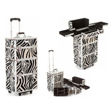 Trousse de maquillage de trolley de maquillage professionnel cas de train (HX-A0728)