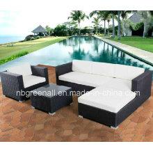 Muebles al aire libre de la rota del jardín del patio de la venta caliente (GN-9029-1S)
