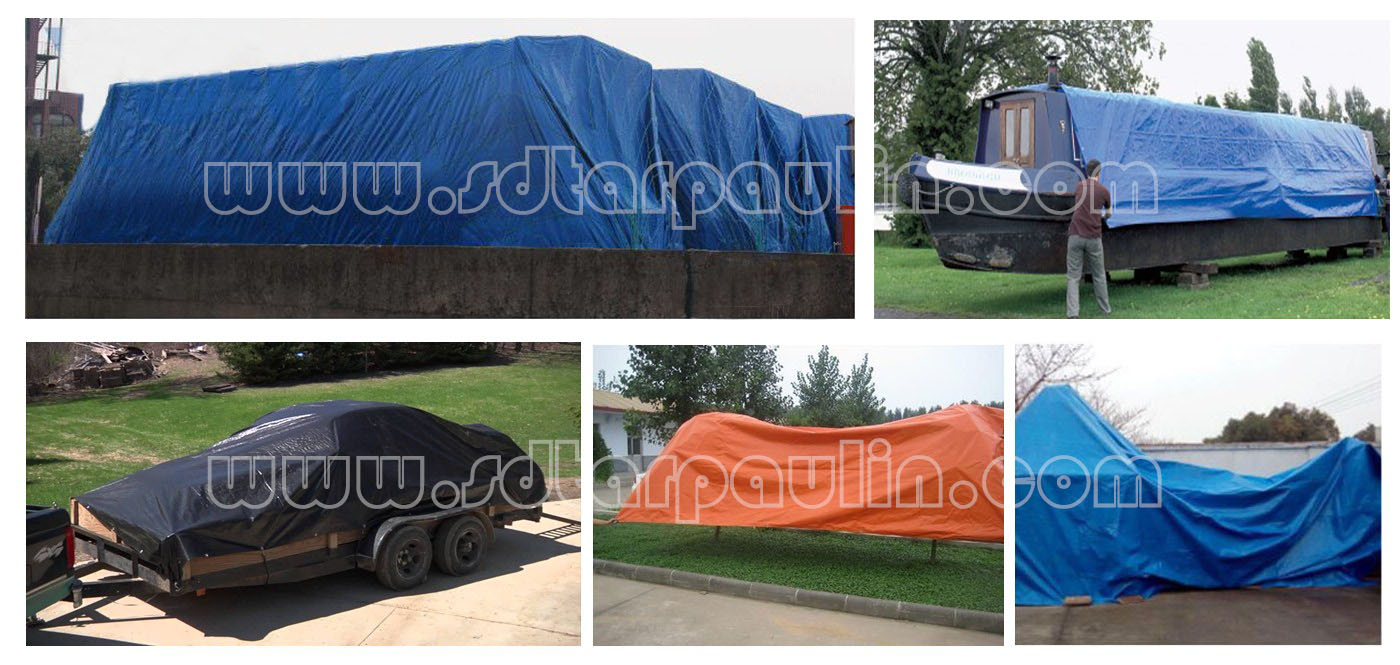 Tarp Appilication