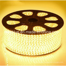3014 120LEDs/M AC220V Waterproof LED Strip Lighting