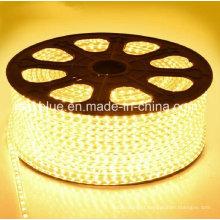 3014 120LEDs/M AC220V Waterproof LED Strip Lighting