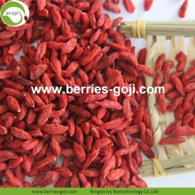 Wholesale Nutrition Healthy Eu Standard Goji Berry