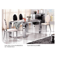 Modern Rectangle Dining Table with Marble/Glass