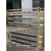 Las jaulas de codorniz utilizan equipo de cría para la codorniz de capa