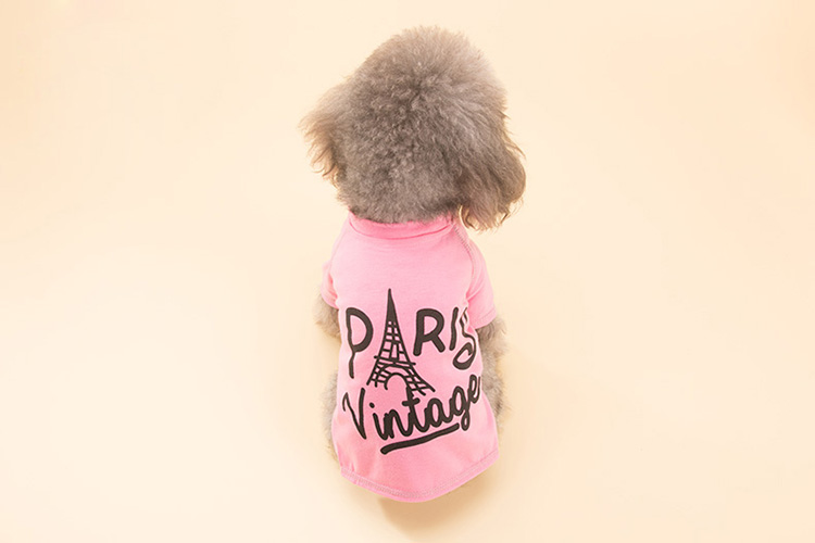 Pet clothes for small dogs
