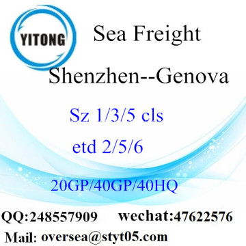 Shenzhen Port Sea Freight Shipping ke Genova