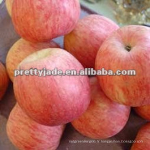 Pomme rouge de bonne qualité