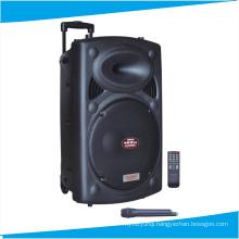 8′′ Inch Wireless Speaker Party Speaker with Trolley F631s