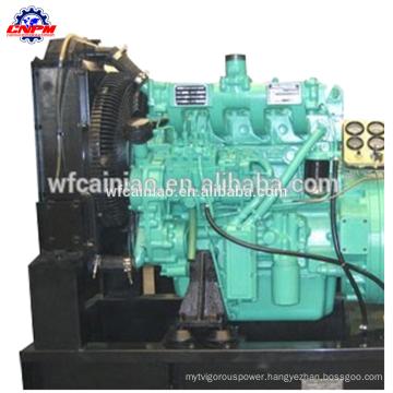 weifang ricardo 495/4100 diesel engine