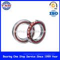 China fábrica y rodamiento de bolitas de contacto angular de una hilera de nivel superior (7304 B)