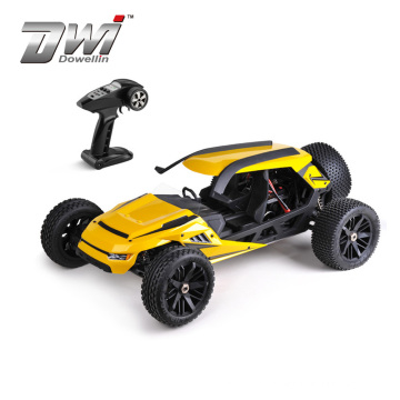 DWI 1:6 Scale High Power Motor 80km/h Electric Brushless RC Car