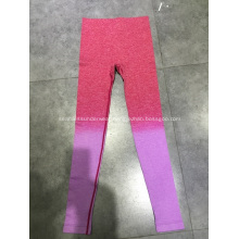 Cool Fast Seamless Ladies Sport Leggings