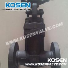 Válvula de globo sellada de fuelle de acero forjado (WJ41)
