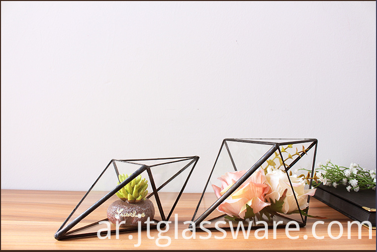 Terrarium Glass Geometric
