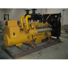 300KW Дизельный электрогенератор