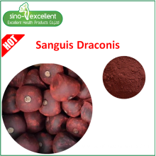 Goods high definition for herbal extract Dragon's blood Extract Powder supply to Guinea Manufacturers