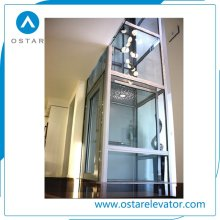 China Manufacture Capsule Sightseeing Lift Observation Elevator Price