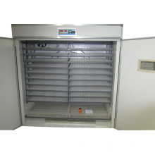 Look! hot sale!!!3520 Chicken eggs incubator for sale