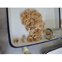 Factory Price Canned Mushroom Pns with Good Colur and Cut (HACCP, ISO, BRC)