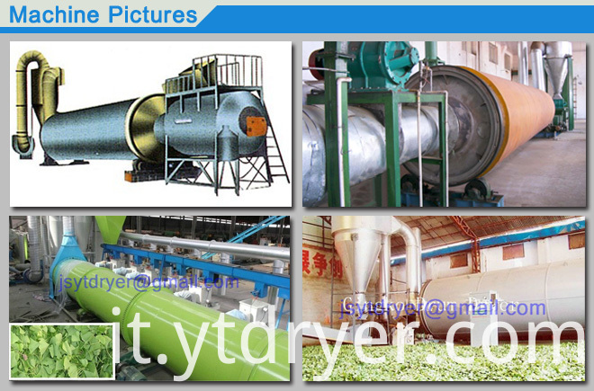 Plant Rotary Barrel Dryer