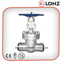 ANSI/API Wcb Butt Weld Wedge Gate Valve