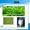 98% Polyphenole & 50% EGCG & 80% Catechine Grüner Tee Extrakt