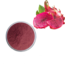 High Quality Dragon Fruit Concentrate Extract Dragon Fruit Juice Powder