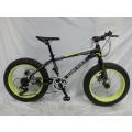 "Beliebtes neues Modell 20 ""* 4.0 Wide Fat Tire Bike (FP-MTB-FAT07)"
