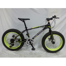 "Beliebtes neues Modell 20 ""* 4.0 Wide Fat Tire Bike (FP-MTB-FAT07)"