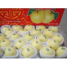 Delicious Fresh Golden Apple Supplier From Shandong Boren